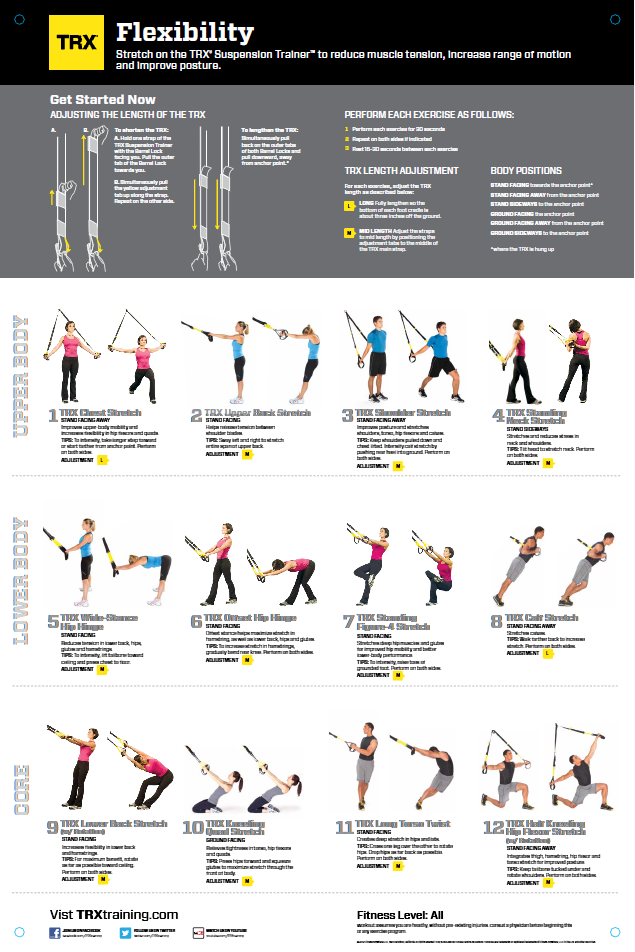 the essential guide to fitness pdf