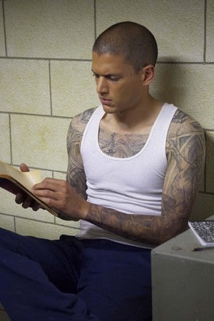 prison break season 1 episode guide
