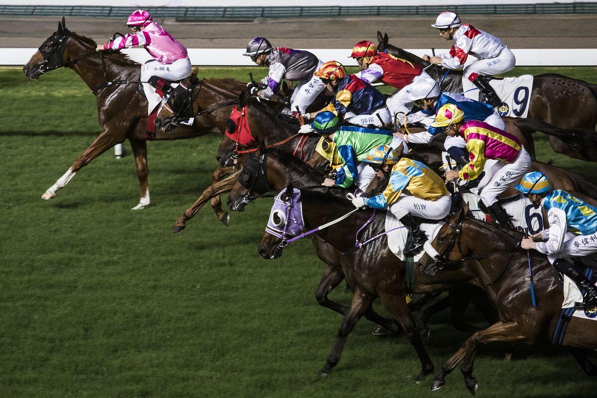 hong kong horse racing form guide