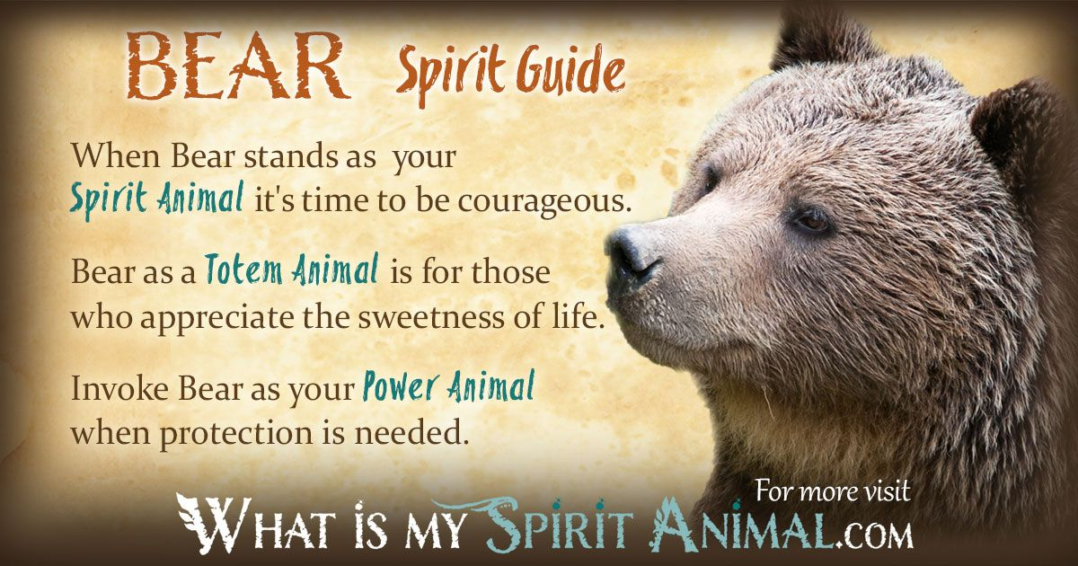 native american spirit guides meanings