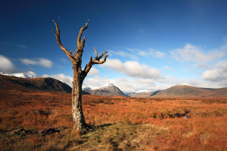scotland walking tours self guided