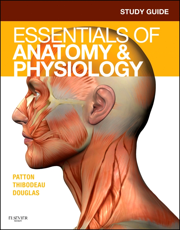 study guide for essentials of pathophysiology
