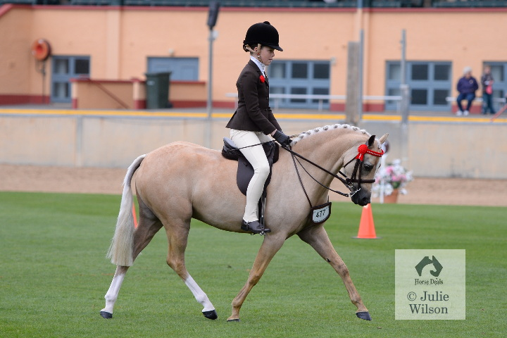 royal adelaide show guide 2015